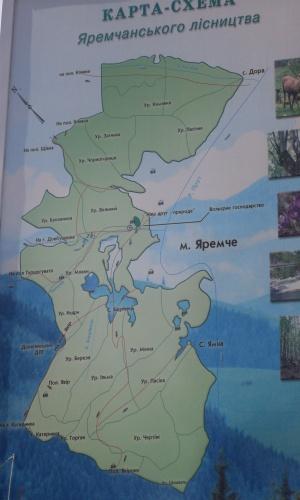 Гостинний двір «Вечір в Карпатах» карта - схема Яремчанського лісництва
